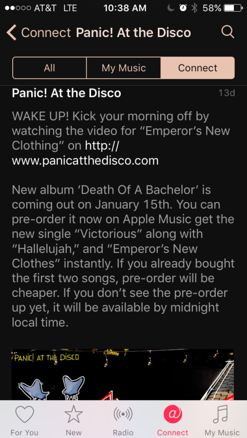 Death+Of+A+Bachelor
